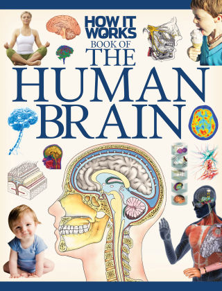 How It Works Book of the Human Brain 1st Edition