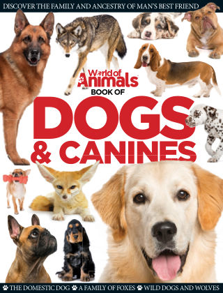World Of Animals Book of Dogs & Canines 1st Edition