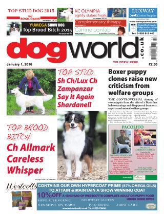 Dog World 1st January 2016