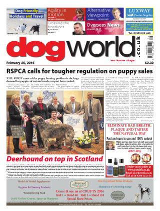 Dog World 26th February 2016