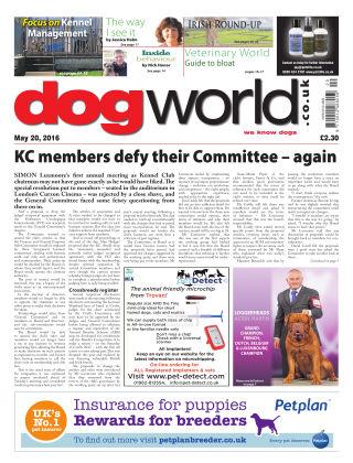Dog World 20th May 2016