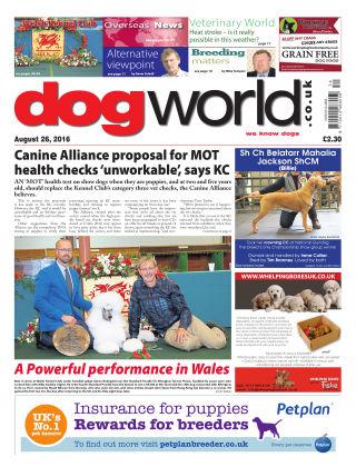 Dog World 26th August 2016