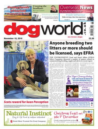 Dog World 18th November 2016
