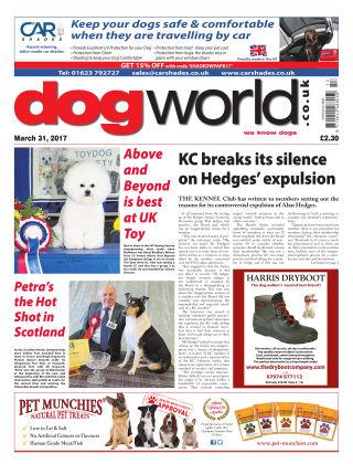 Dog World 31st March 2017
