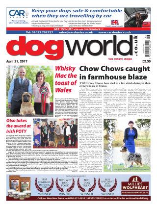 Dog World 21st April 2017