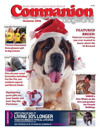 Companion December 2016