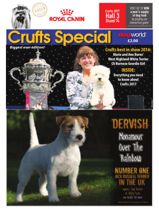 Crufts Special 2017