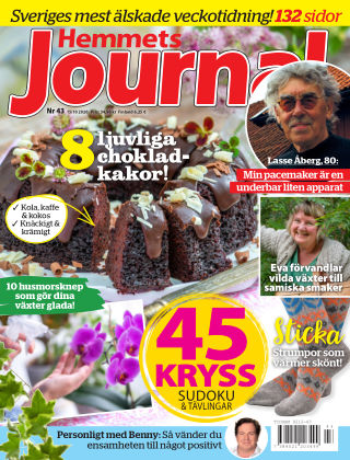 Hemmets Journal 2020-10-15