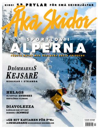 Åka Skidor 2017-02-03