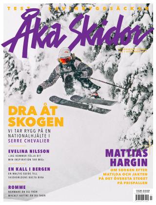 Åka Skidor 2017-11-07