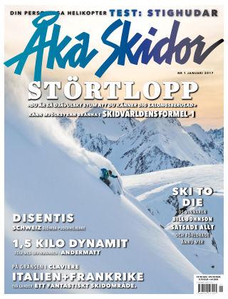 Åka Skidor 2017-01-05