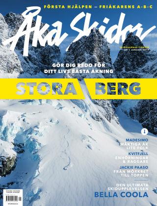 Åka Skidor 2019-01-10