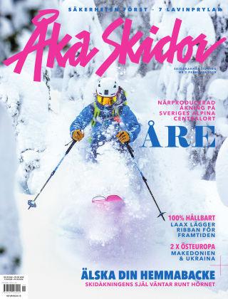 Åka Skidor 2019-02-07