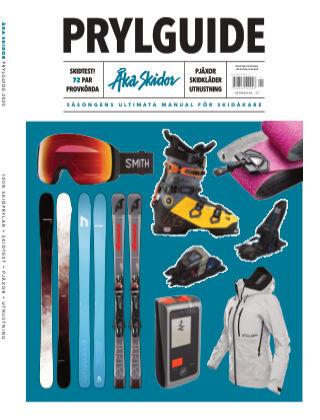 Åka Skidor 2020-10-29