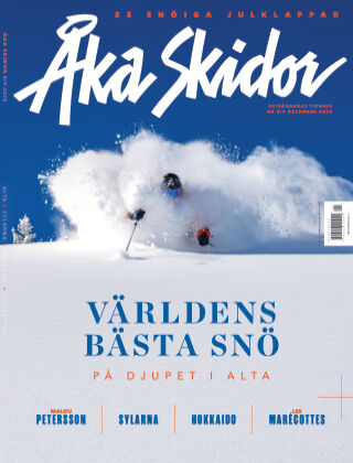 Åka Skidor 2020-12-10
