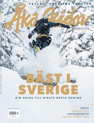 Åka Skidor 2021-01-07