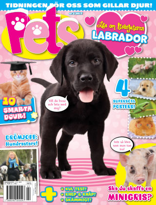 Pets 2017-02-28