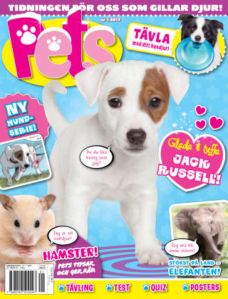 Pets 2017-01-20