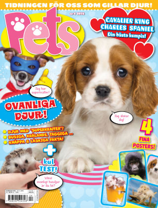 Pets 2016-04-29