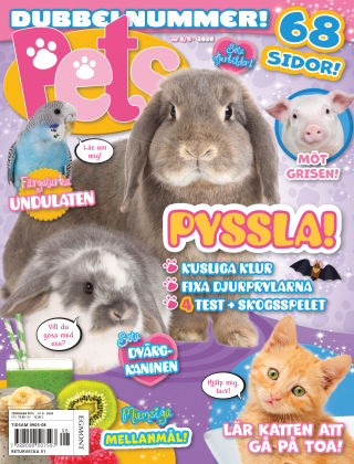 Pets 2020-10-13