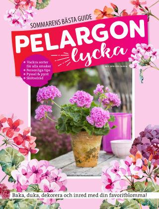 Pelargonlycka 2018-06-01