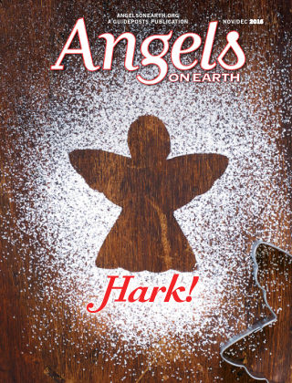 Angels on Earth Nov-Dec 2016