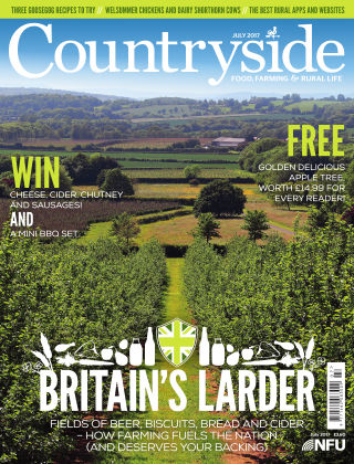 Countryside July 2017