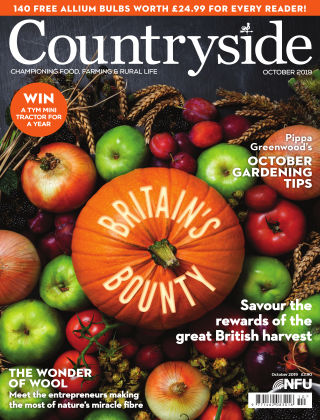 Countryside October 2019