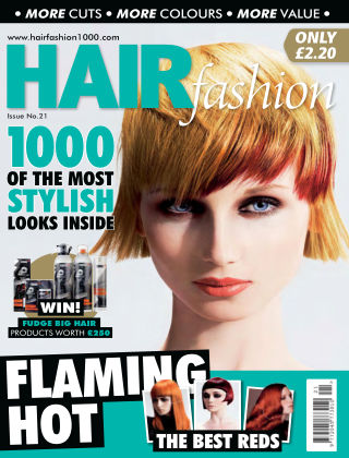 Hair Fashion 21