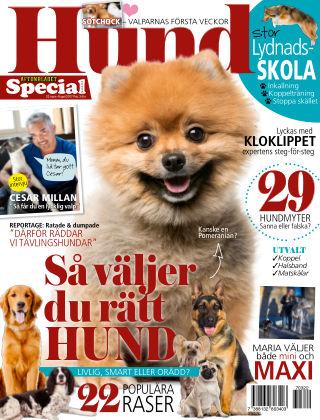 Aftonbladet Hund 2017-03-22