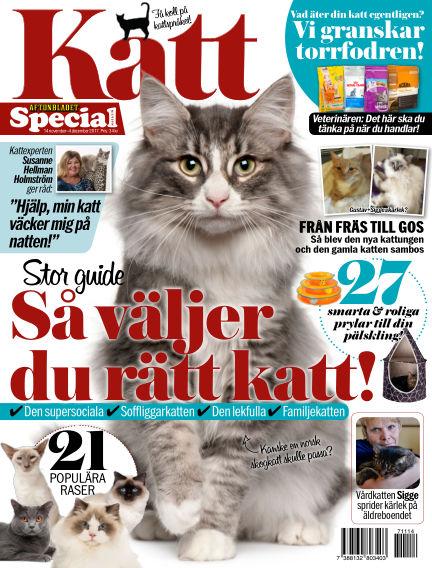 Aftonbladet Katt