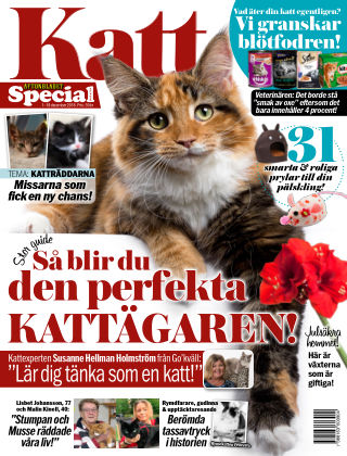 Aftonbladet Katt 2018-12-01