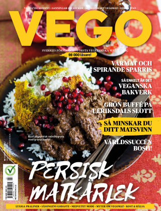 Vego 2019-04-04