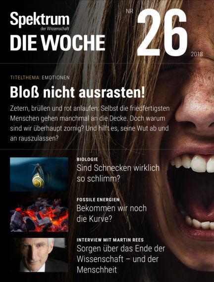Spektrum - Die Woche June 28, 2018 00:00