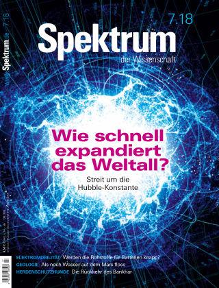 Spektrum der Wissenschaft 7 2018