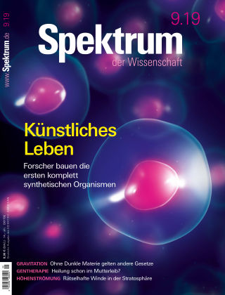 Spektrum der Wissenschaft 09 2019