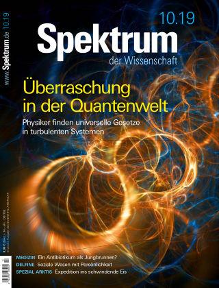 Spektrum der Wissenschaft 10 2019