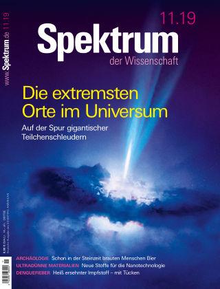 Spektrum der Wissenschaft 11 2019