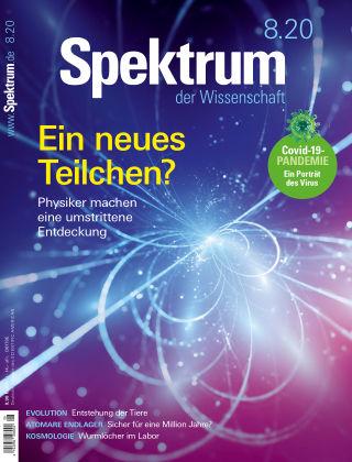 Spektrum der Wissenschaft 8 2020
