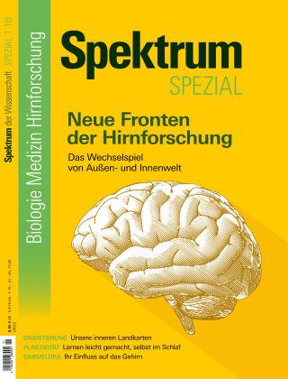 Spektrum Spezial Hirnforschung