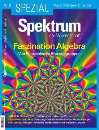 Spektrum Spezial Faszination Algebra