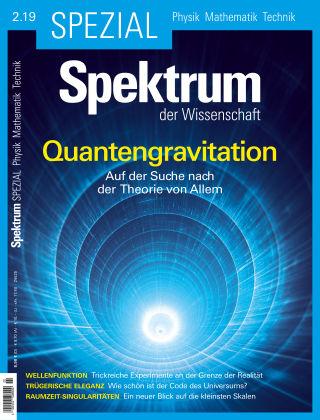 Spektrum Spezial Quantengravitation