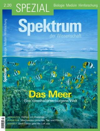 Spektrum Spezial Das Meer
