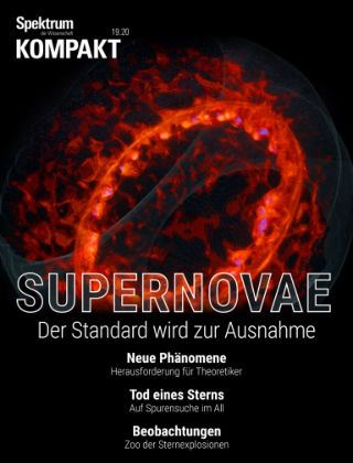 Spektrum Kompakt Supernovae