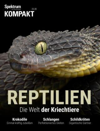 Spektrum Kompakt Reptilien