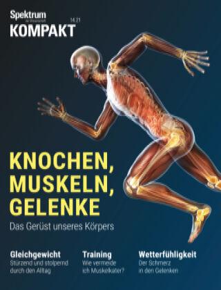 Spektrum Kompakt Knochen, Muskeln,...
