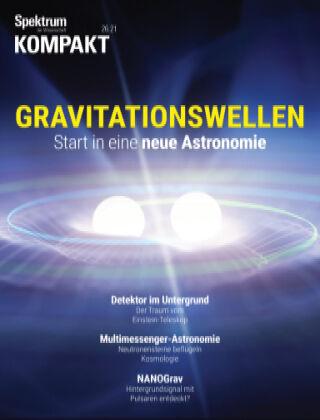Spektrum Kompakt Gravitationswellen
