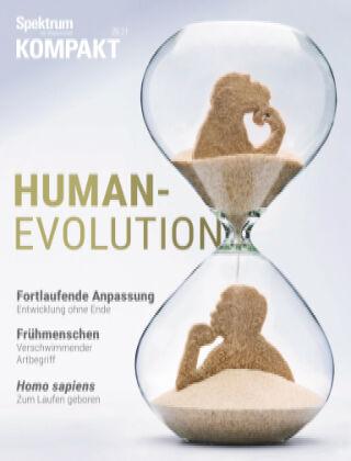 Spektrum Kompakt Humanevolution