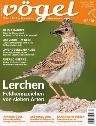 VÖGEL - Magazin für Vogelbeobachtung 02/16
