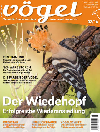 VÖGEL - Magazin für Vogelbeobachtung 03/16